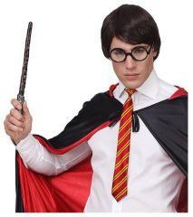 Sada Harry Potter